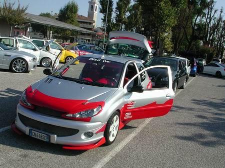 206 Tuning Rally